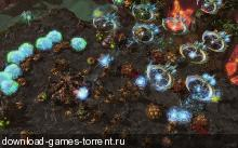 StarCraft II Heart of the Swarm (Blizzard Entertainment) (ENG) [Beta]