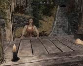 The Elder Scrolls V: Skyrim & Dawnguard and Hearthfire + MegaMod's Edition Pack (2011/RUS/RePack)
