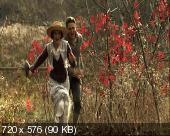 Когда любви не достаточно: История Лоис Уилсон / When Love Is Not Enough: The Lois Wilson Story (2010) DVDRip + DVD