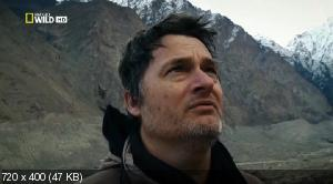 Снежный барс Афганистана / Snow Leopard of Afghanistan (2012) HDTV 1080i + HDTVRip
