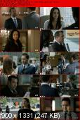 Suits [S02E14 ]HDTV XviD-AFG