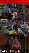 The Big Bang Theory [S06E16] HDTV.XviD-AFG