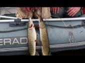 """Видеоприложение к журналу """"Рыбачьте с нами"""" №43 (Март) 2013"""