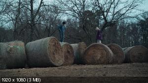 http://i54.fastpic.ru/thumb/2013/0226/83/_657e6237abbcf6c8d8db0bac9f419583.jpeg