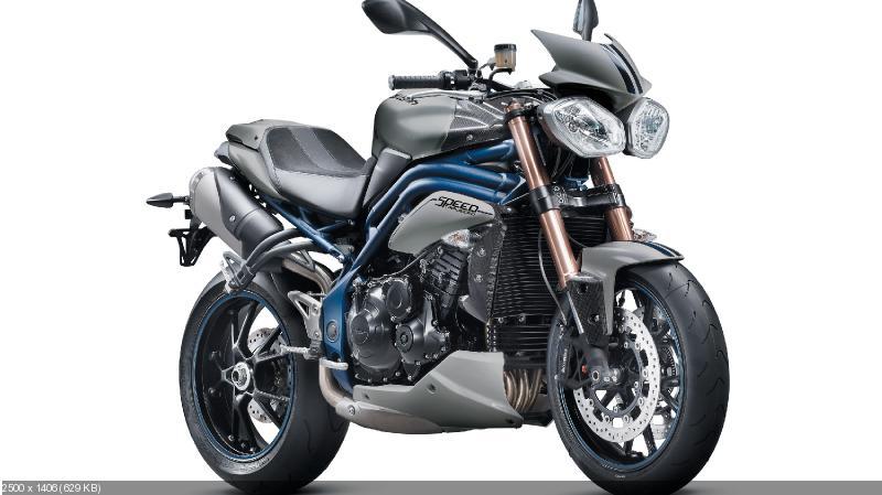 Мотоциклы Triumph Bonneville SE и Speed Triple SE 2013