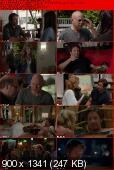 Californication [S06E08] HDTV XviD-AFG