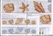 свой цитатник или сообщество!  Ракушки.Схемы -вышивки.  Несколько красивых схем вышивки морских ракушек.