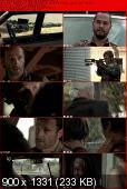 The Walking Dead [S03E13] HDTV.XviD-AFG
