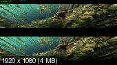 Доспехи бога 3: Миссия Зодиак / Chinese Zodiac (2012) DVDRip