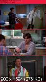 Two and a Half Men [S10E19] HDTV.XviD-AFG