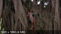 Демонстрация купальников / Sports Illustrated Swimsuit 3D (2011) Blu-ray 3D