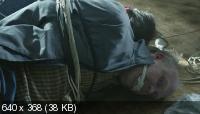 Настоящие люди [1 сезон] / Äkta människor / Real humans (2012) DVDRip